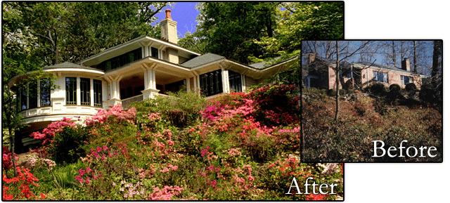 house with plantings before and after