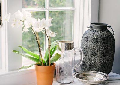 Flowers next to a window
